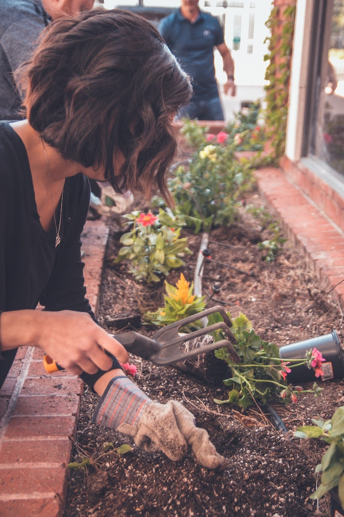 8 Способов помочь вашему саду пережить аномальную жару