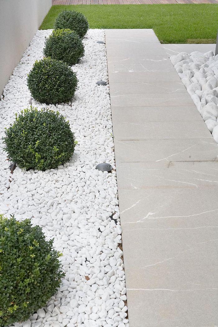 10 Видов мульчи для идеального газона и сада