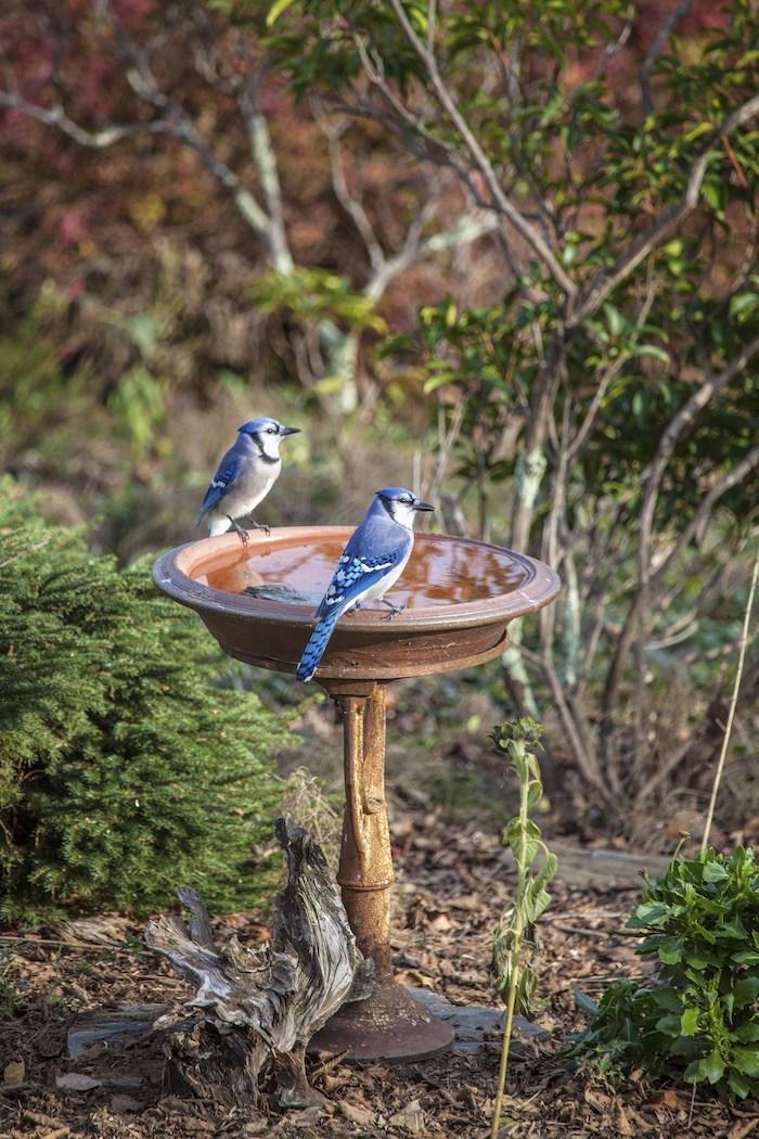 20 Способов украсить свой садовый участок не используя растения