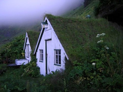 ТОП 20 Живописных домов с «зеленой» крышей. Мастер-класс