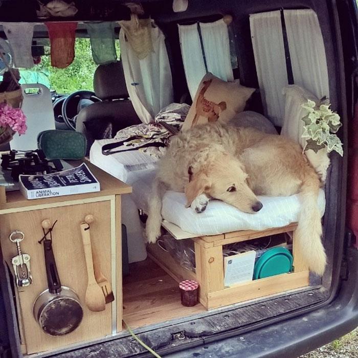 Итальянка путешествует в восстановленном Renault Kangoo вместе со своей собакой